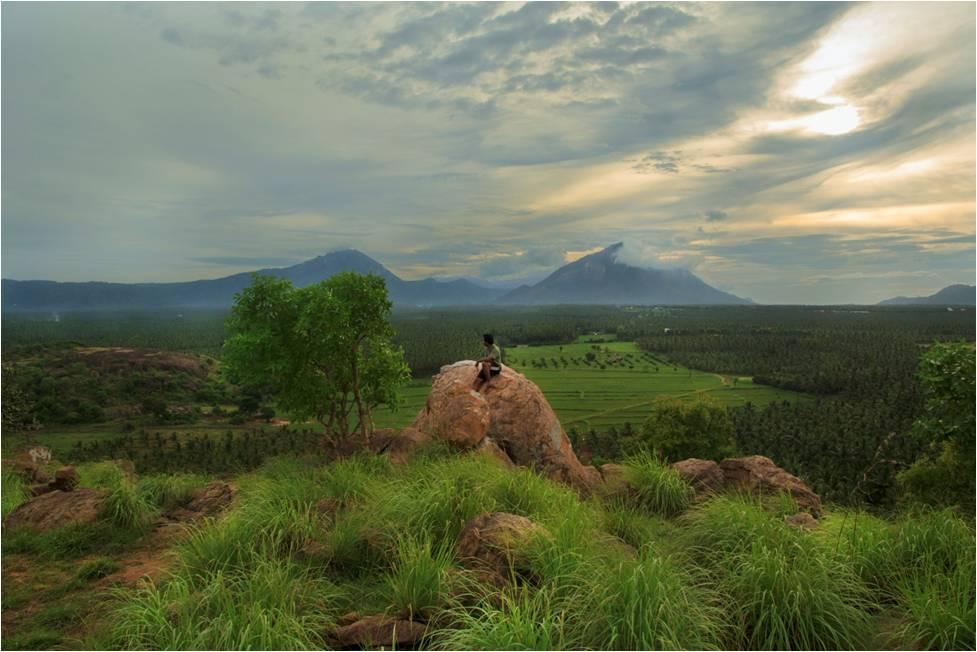 Rediscovering Photography On Summer >> Thadam ExperiencesThe Pollachi Papyrus| Places to Explore in Pollachi | Sethumadai | Valparai ...