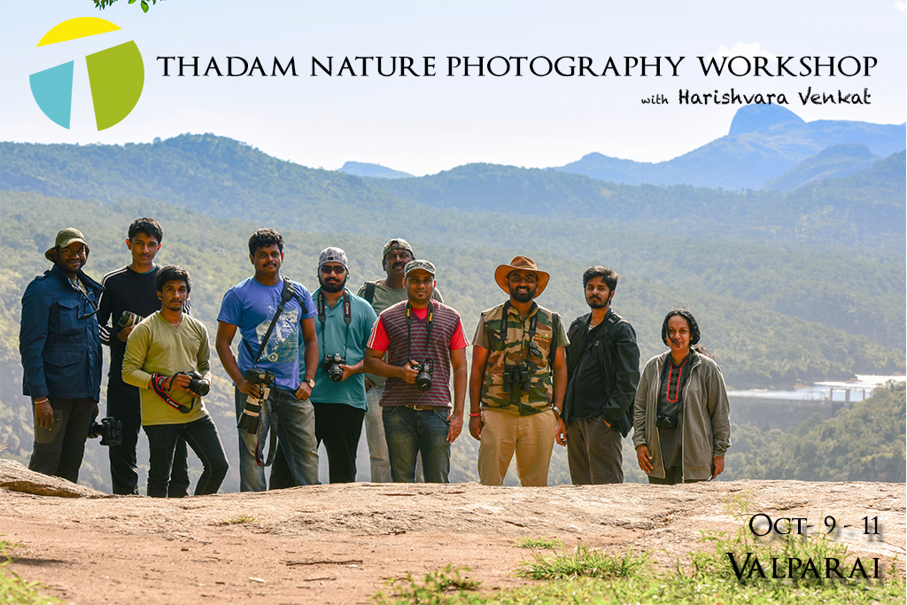 thadam nature and wildlife photography workshop, photography workshop, valparai, nilgiri tahr, pollachi tour, photography tour, nature tour, waterfalls, aliyar, pollachi papyrus, TNWP,