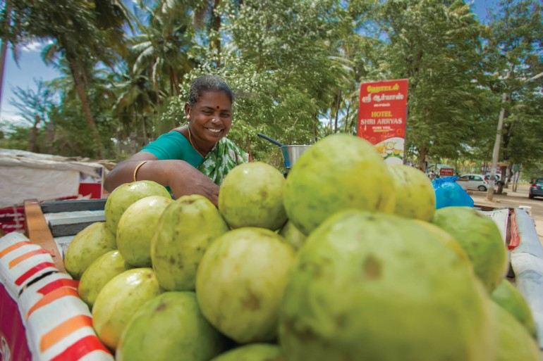 people of pollachi, pollachi, pollachi papyrus, pollachi coimbatore road extension, nh 209, road widening, guavas, roadside stalls, loss of livelihood, pollachi tourism, explore pollachi, cultural tourism, responsilble tourism