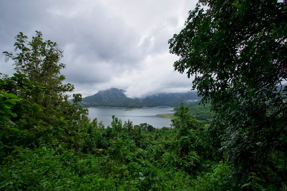 Nelliyampathy, places of attraction, pollachi papyrus, monsoon, waterfalls, rainforest, nemmara, places to visit near pollachi, greenland, POABS, places to stay in nelliyampathy, resorts in nelliyampathy, kalari kovilakom, kollengode