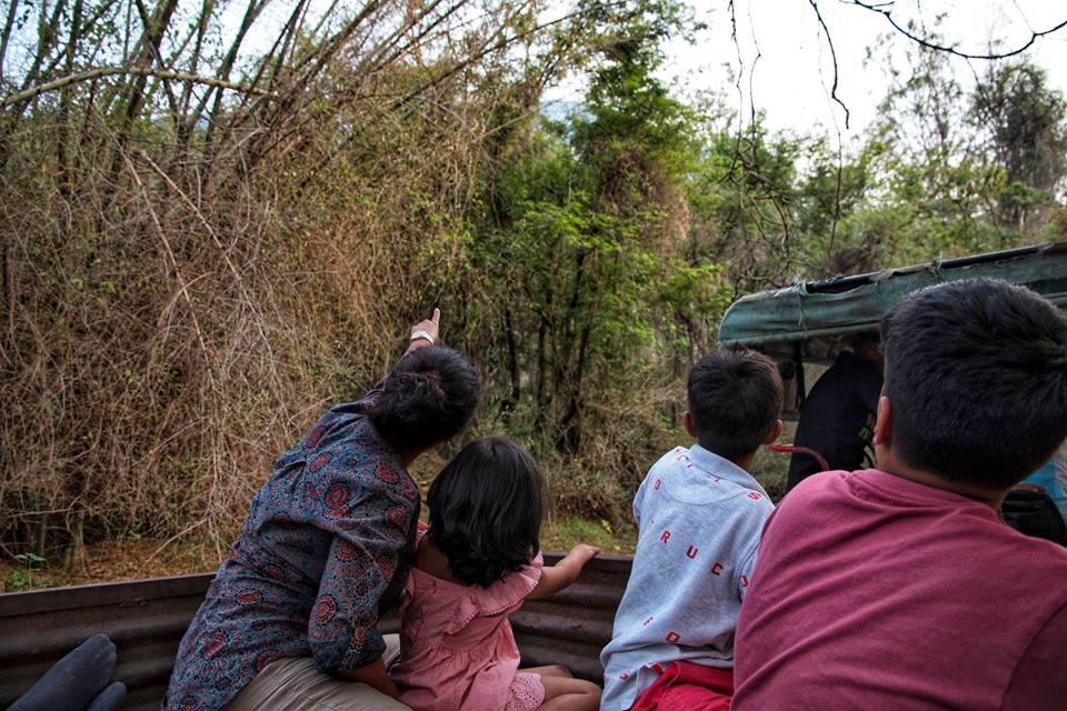 pollachi papyrus, iyal farms, sethumadai, farm tour, pollachi, travel, experience, the papyrus itineraries, summer tour, organic farm, farming, weekend trip, anamalai tiger reserve, anamalais, village tour, tractor ride, spinning top, bambaram, bird watching, pottery, bamboo huts